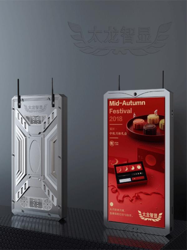压铸铝768x1536mm单面LED灯杆屏